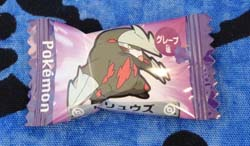 Pokemon Excadrill Candy Piece