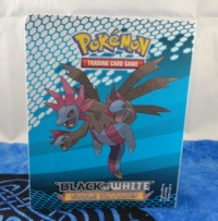 Pokemon Hydreigon & Victini Mini Binder
