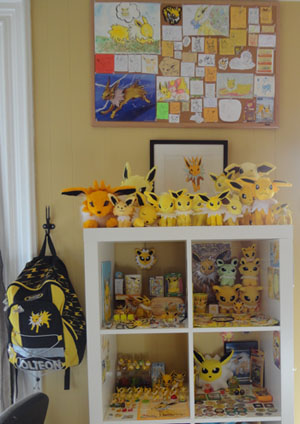 Toz's Jolteon Collection