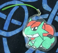 Pokemon Salamence Laminated Charm