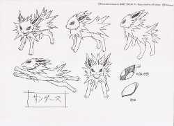 Pokemon Jolteon Settei
